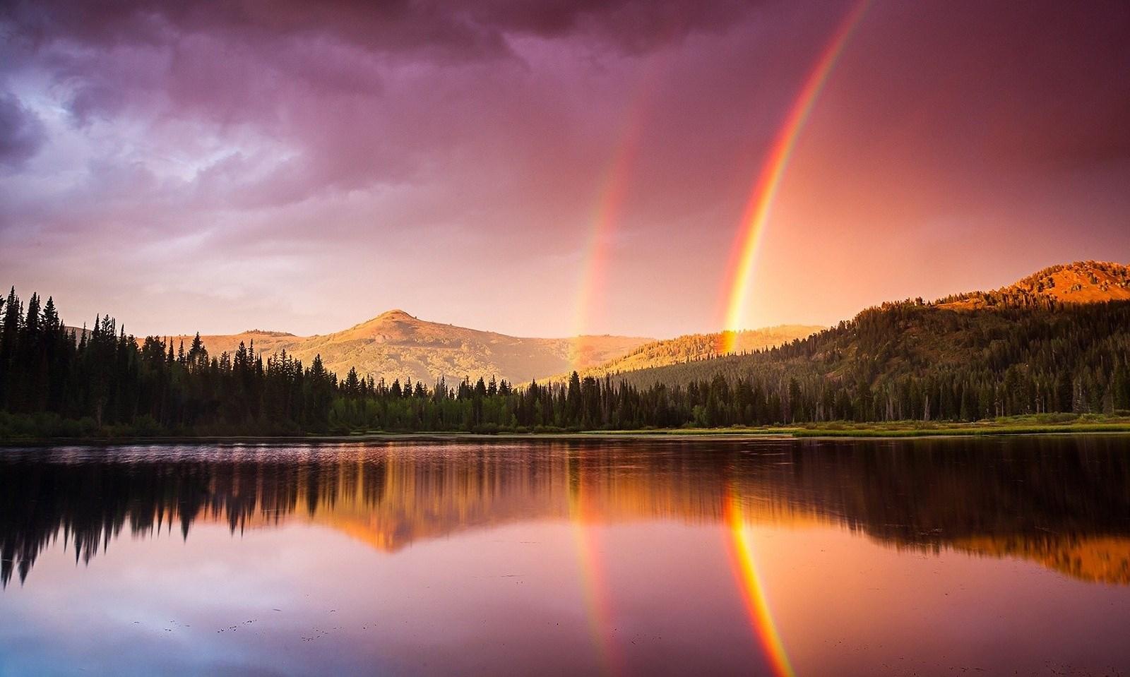 Vedo i tuoi veri colori risplendere dentro di te come un arcobaleno!